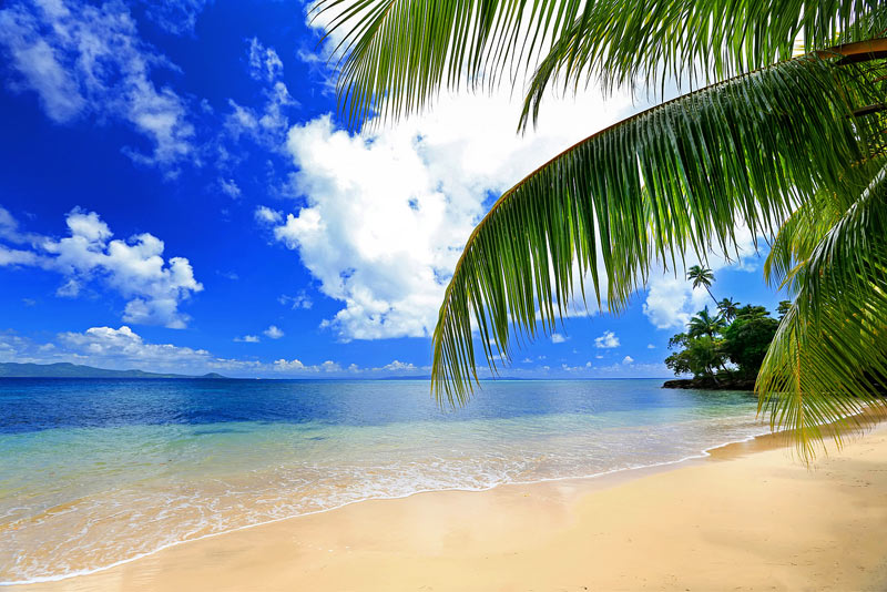 Fiji is the perfect place to escape for a winter holliday.